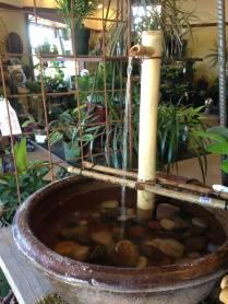 bamboo ftn