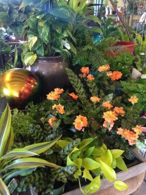 Gardener's Choice 13