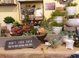 Gardener's Choice gift shop display