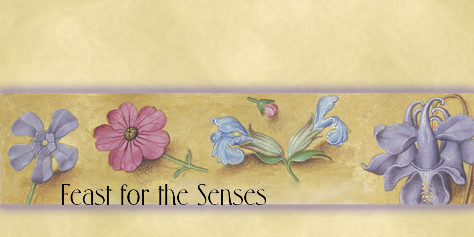 Feast for the Senses banner image